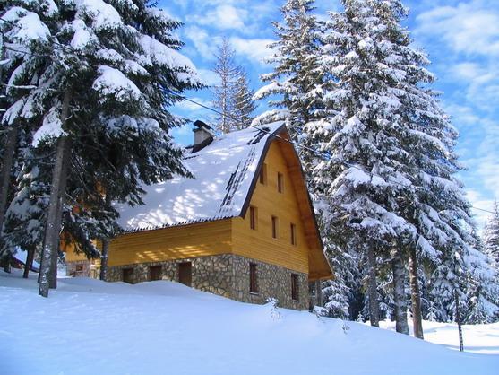 Современный дачный домик. 50 вариантов